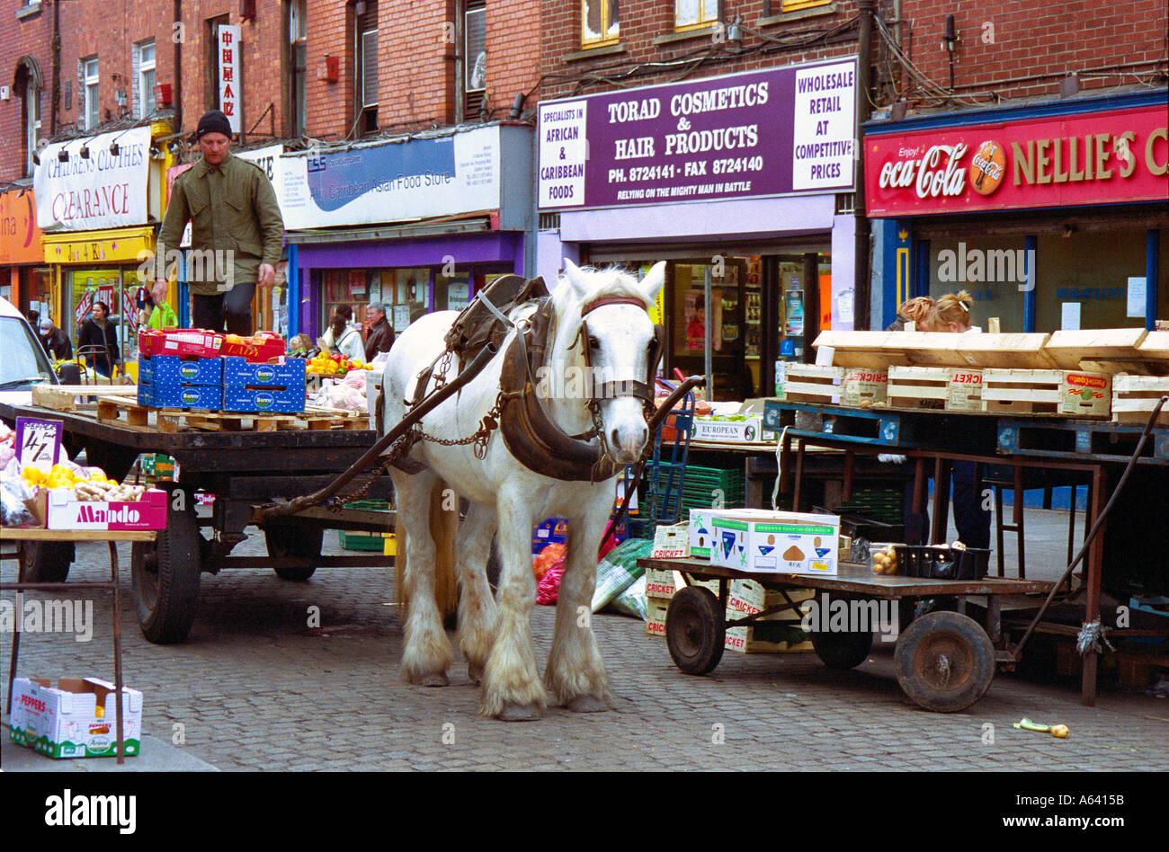Working Horse Moore Street Dublin Ireland Ireland - Stock Image