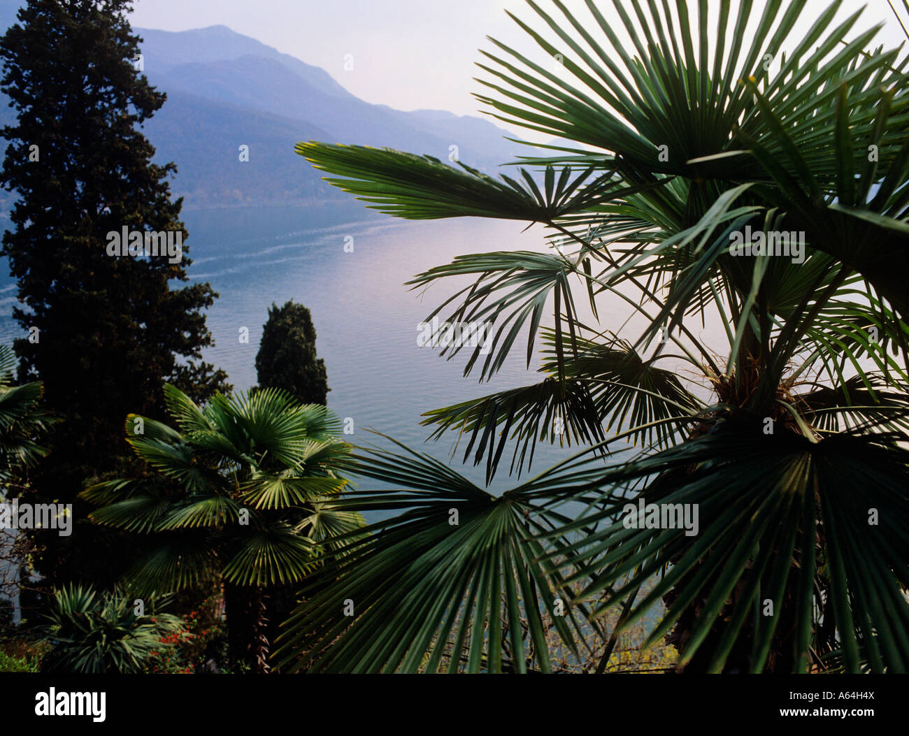 view from gardens of parco scherrer over lake lugano after rainfall at evening near village of morcote ticino switzerland - Stock Image