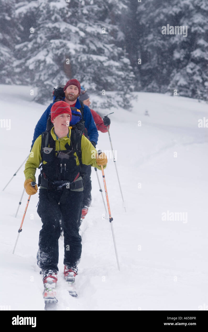 Three crosscountry skiers in the backcountry, Colorado - Stock Image