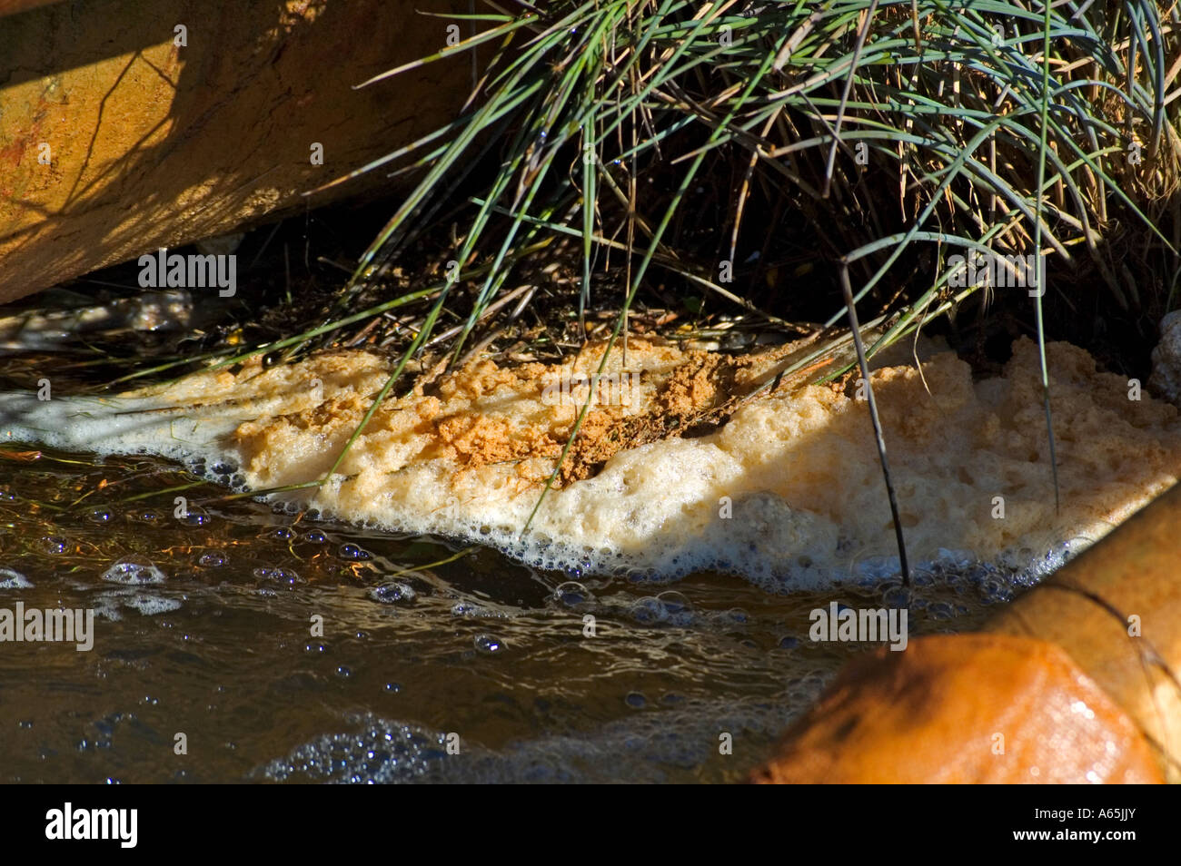 a polluted stream near redruth in cornwall,england - Stock Image