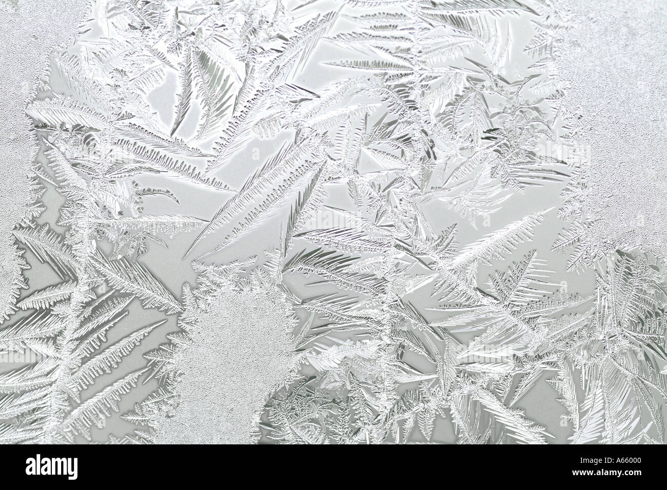Frost On A Wintry Window - Stock Image