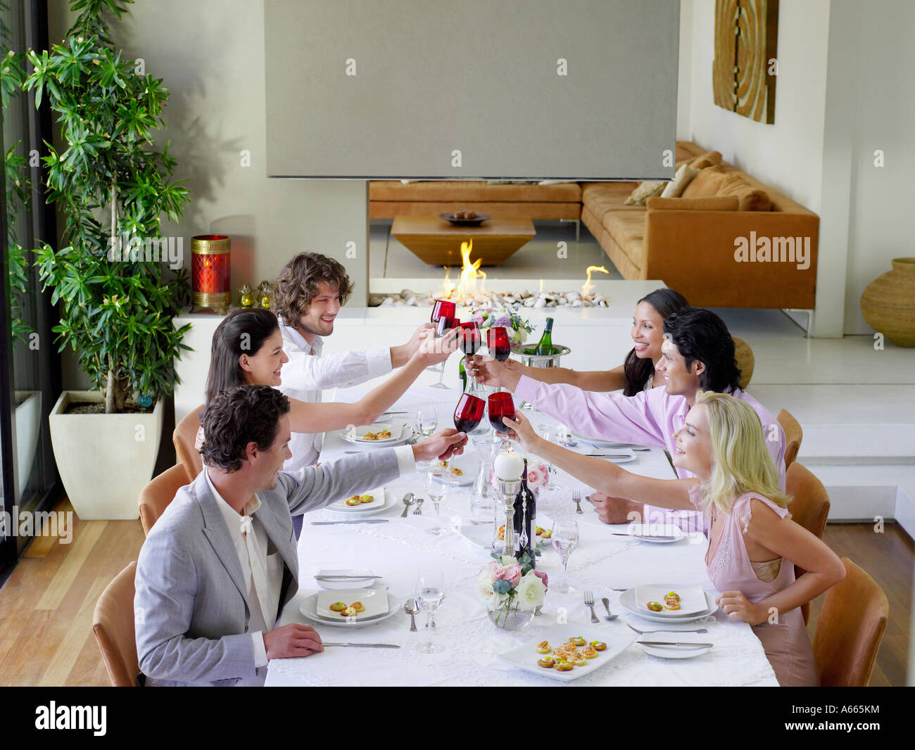 Friends toasting across table at a formal dinner party, side view - Stock Image