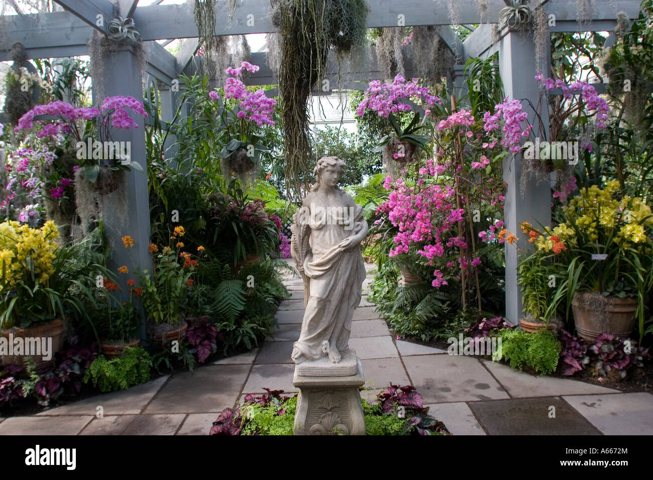 Orchid Show In Enid A Haupt Conservatory At New York Botanical