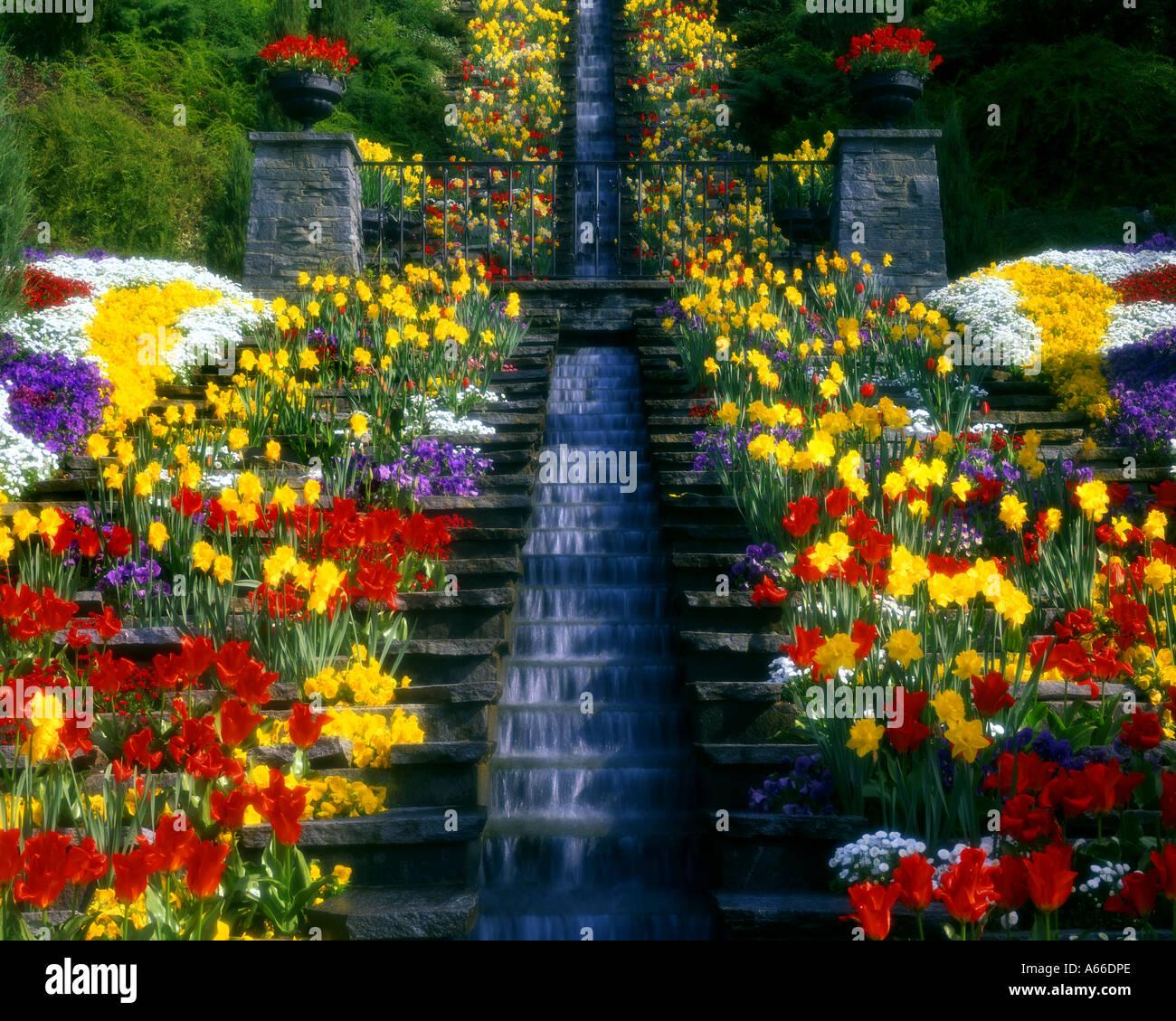 DE - BADEN-WUERTTEMBERG:  Gardens at Mainau Island - Stock Image