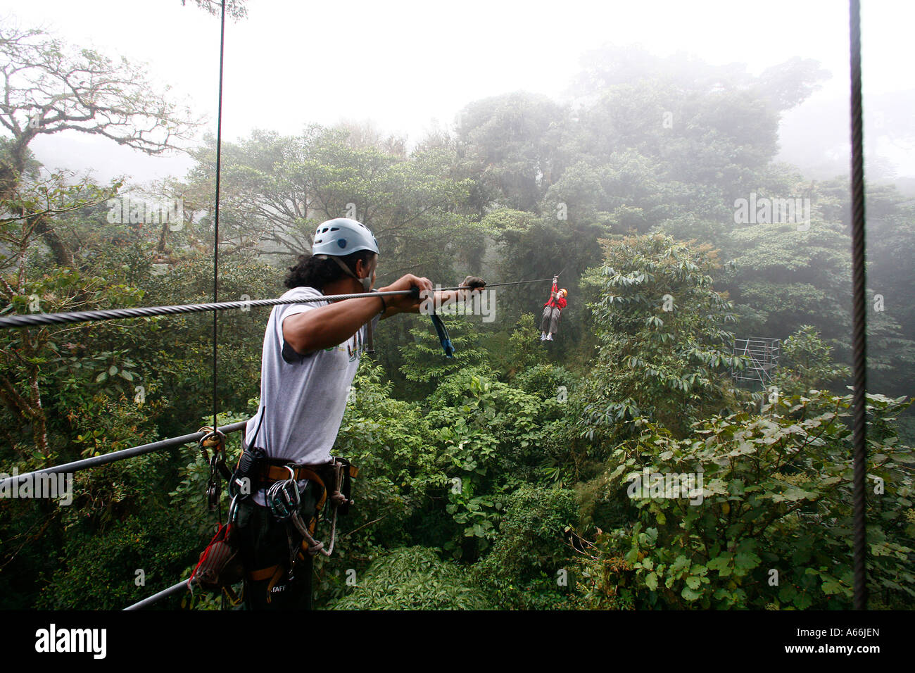 Canopy cable ride at Monteverde cloud forest Costa Rica - Stock Image