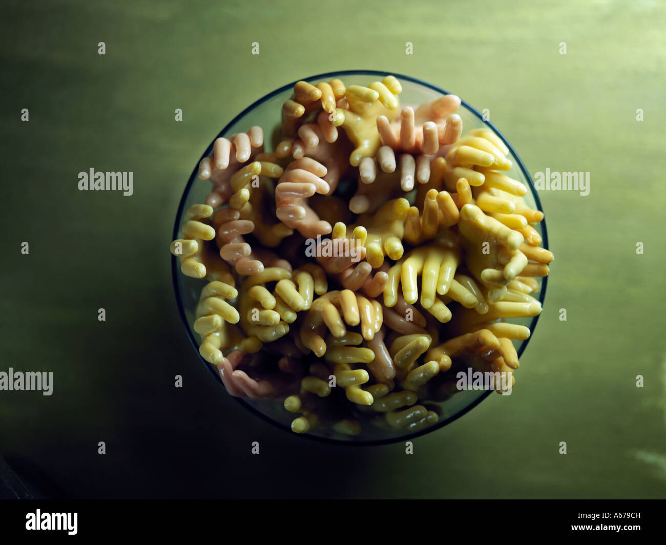hands in bowl - Stock Image