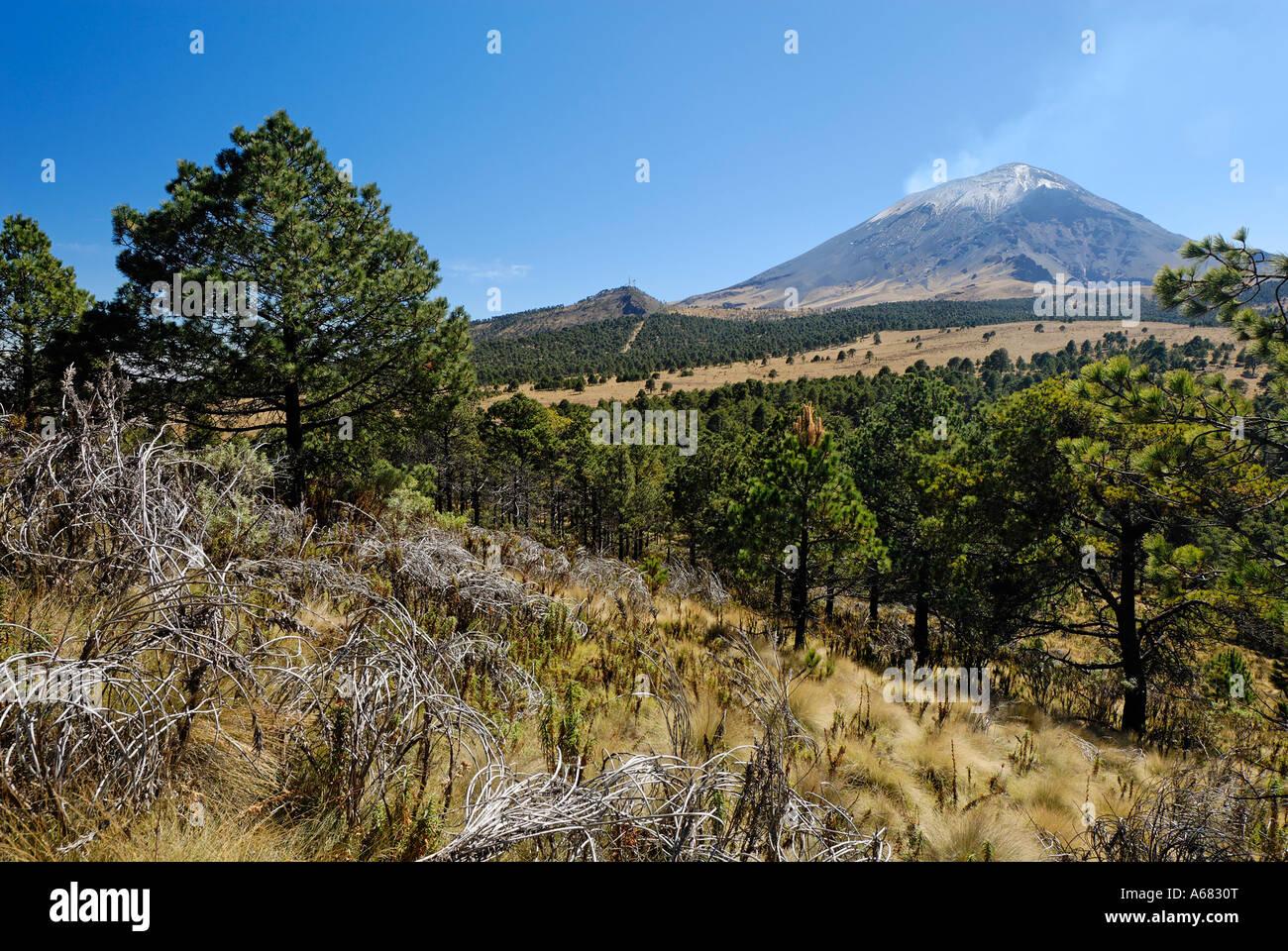 Smoking Popocatepetl volcanoe, Popocatepetl-Iztaccihuatl National Park, Mexico Stock Photo