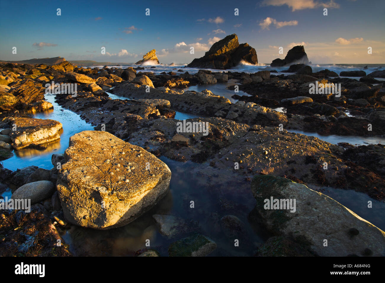 Late afternoon sun illuminates the rocks of Mupe Bay, Dorset - Stock Image