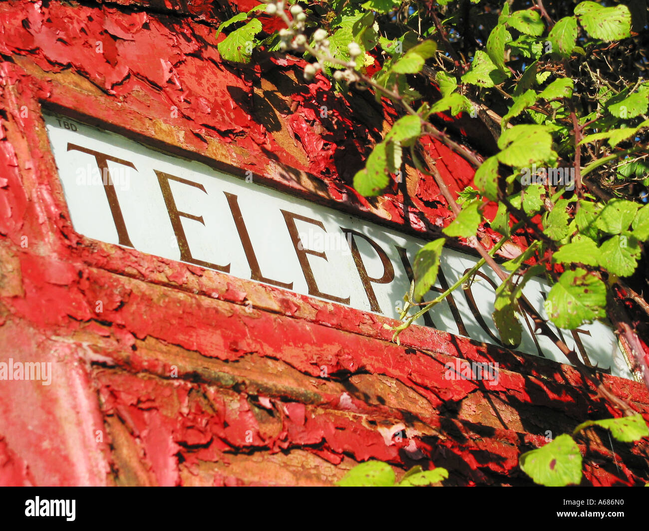 Detail of derelict classic red phone box Glastonbury Somerset England - Stock Image