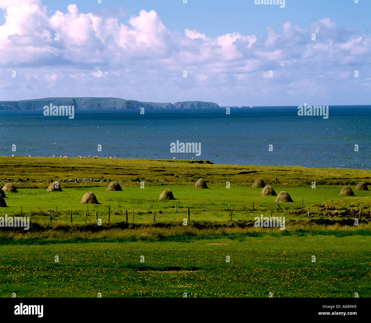 ireland, county mayo, hay standing in a field on the wild atlantic way, beauty in nature, - Stock Image