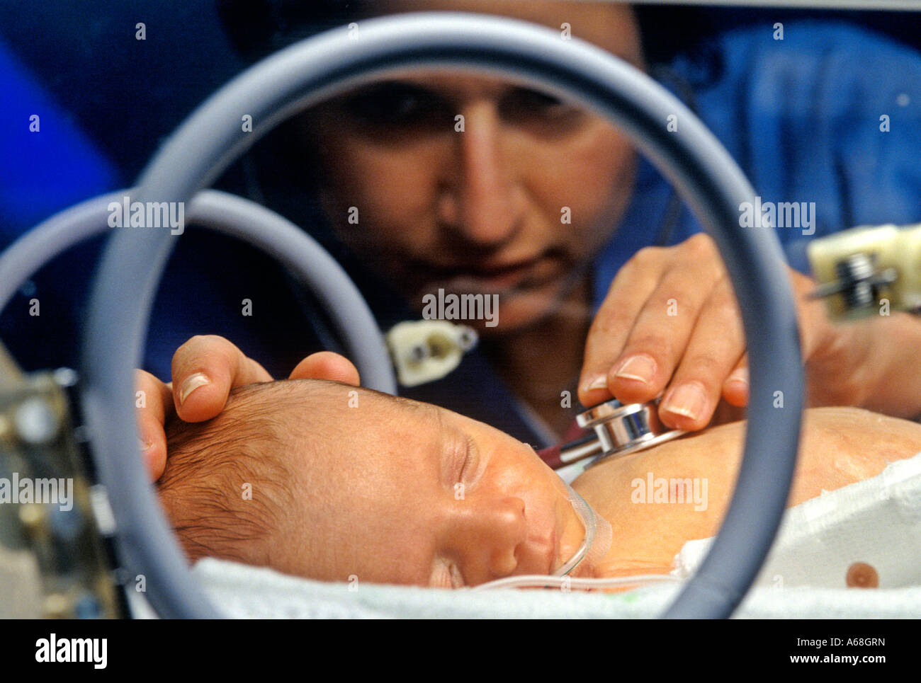 Nurse attends premature infant in an incubator in neonatal intensive ...