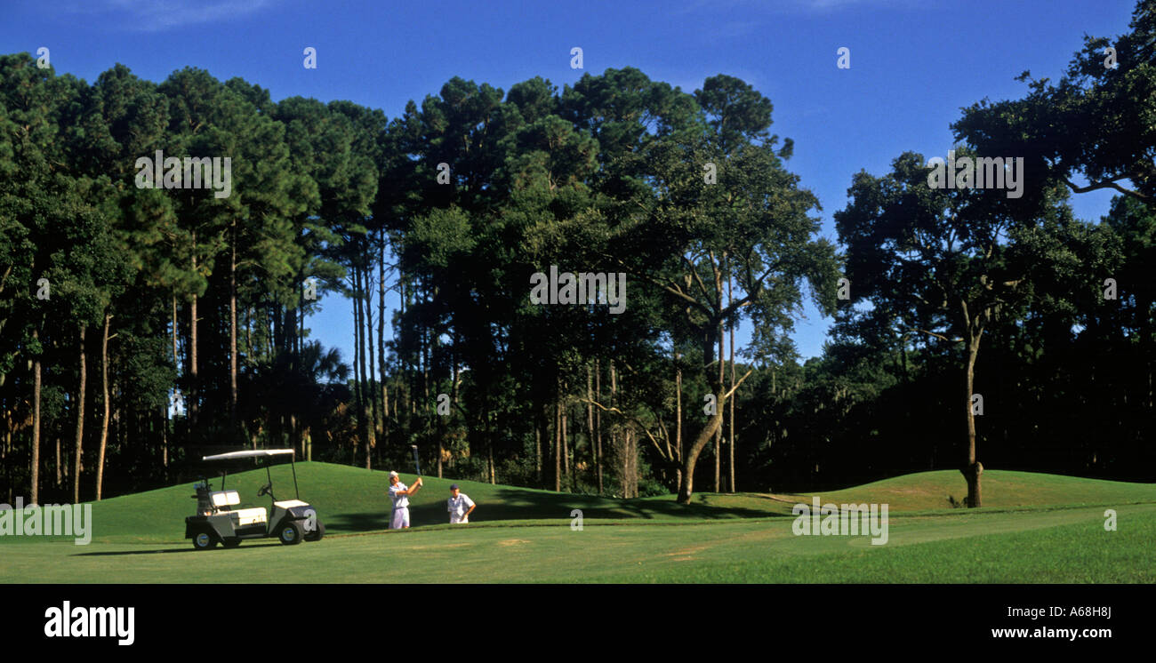 Golfers on fairway - Stock Image