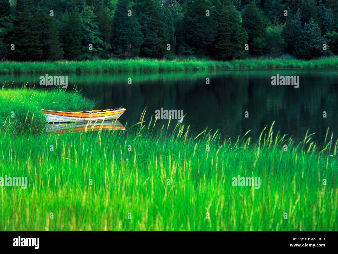 Row boat tied up in marsh grass Mill Pond, Cape Cod - Stock Image