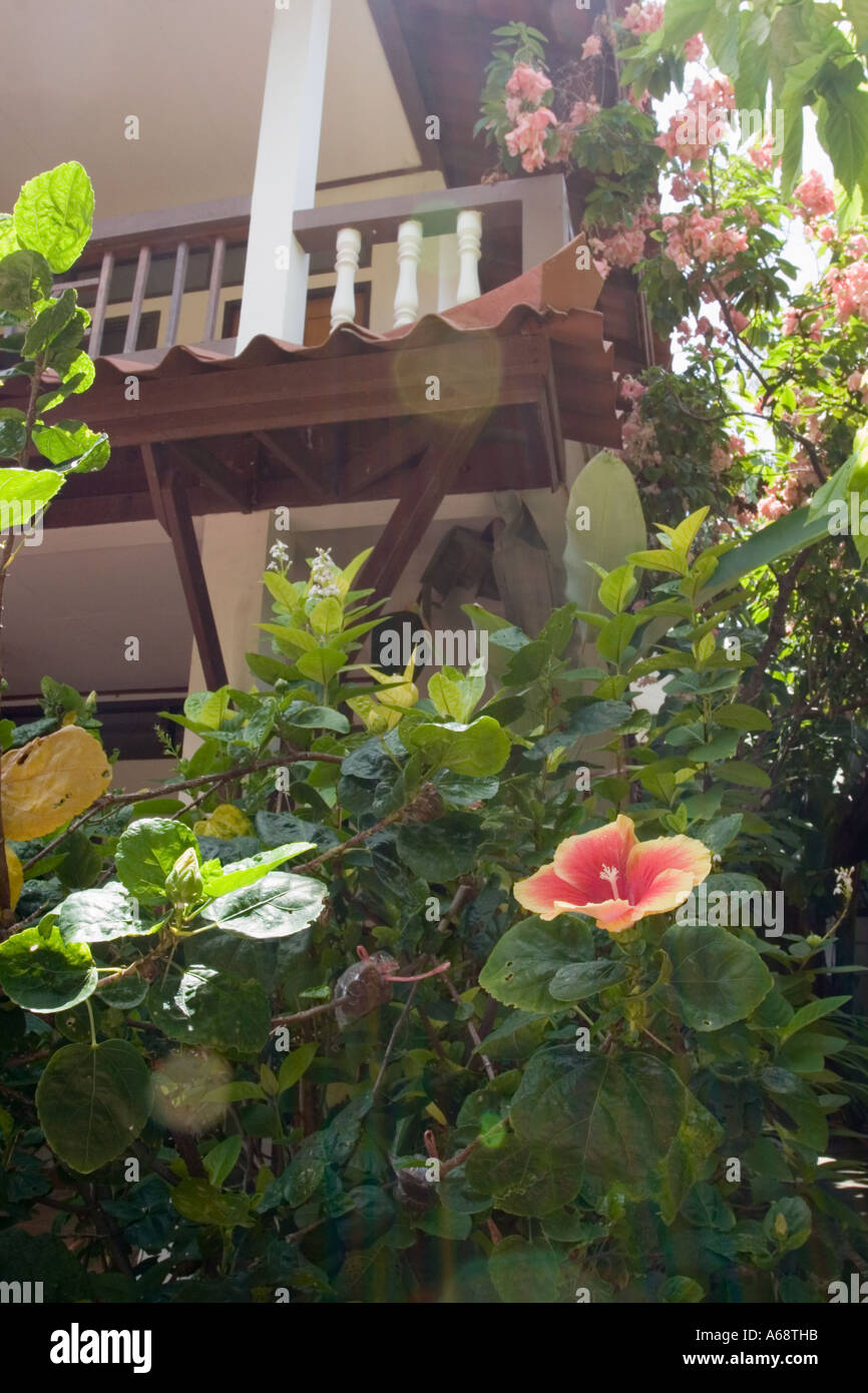 Balcony (of a hotel) with tropical flowers Stock Photo