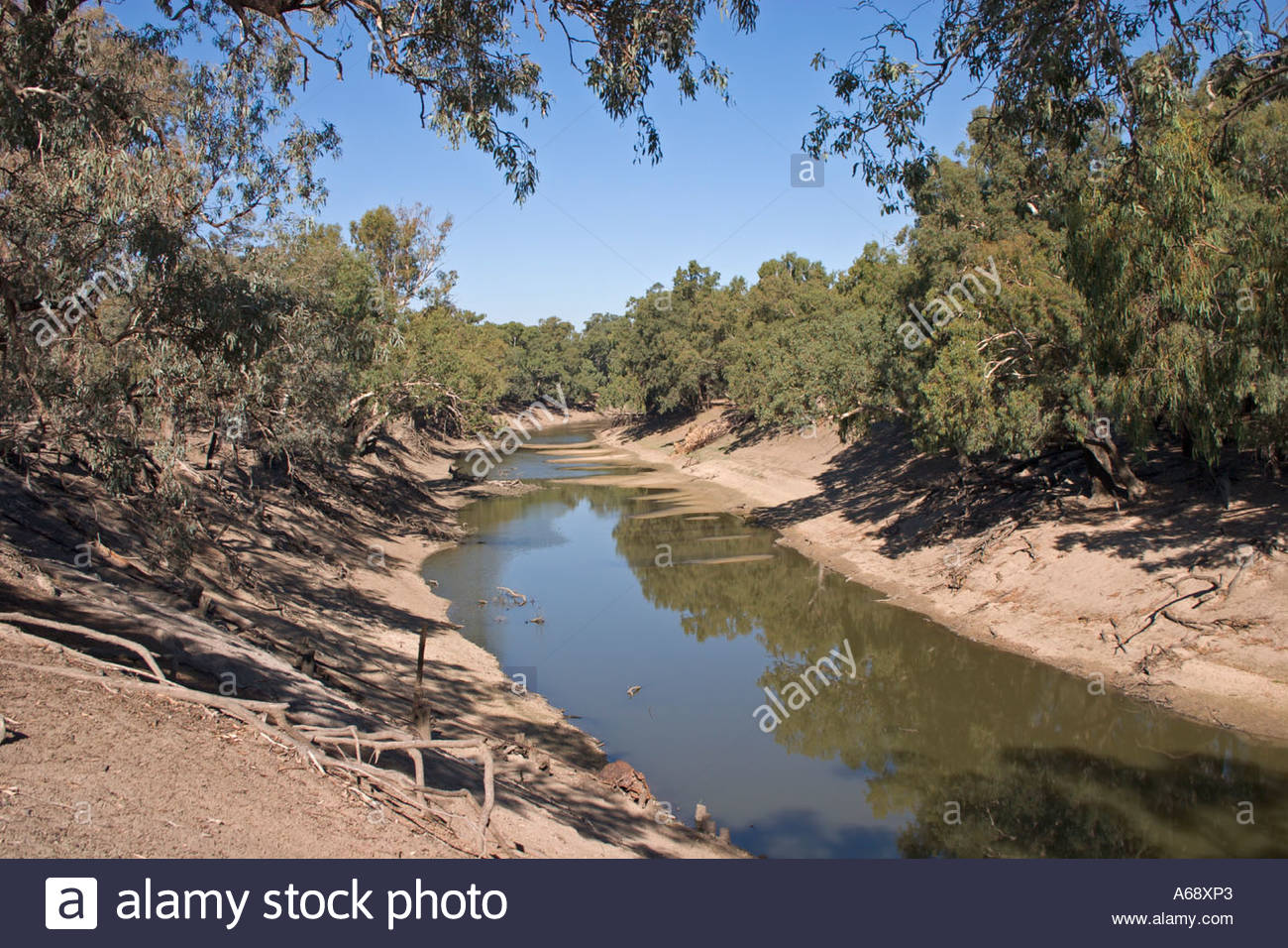 View over the Darling River at Dunlop Station now part of Trilby Station near Louth in Outback New South Wales Australia - Stock Image