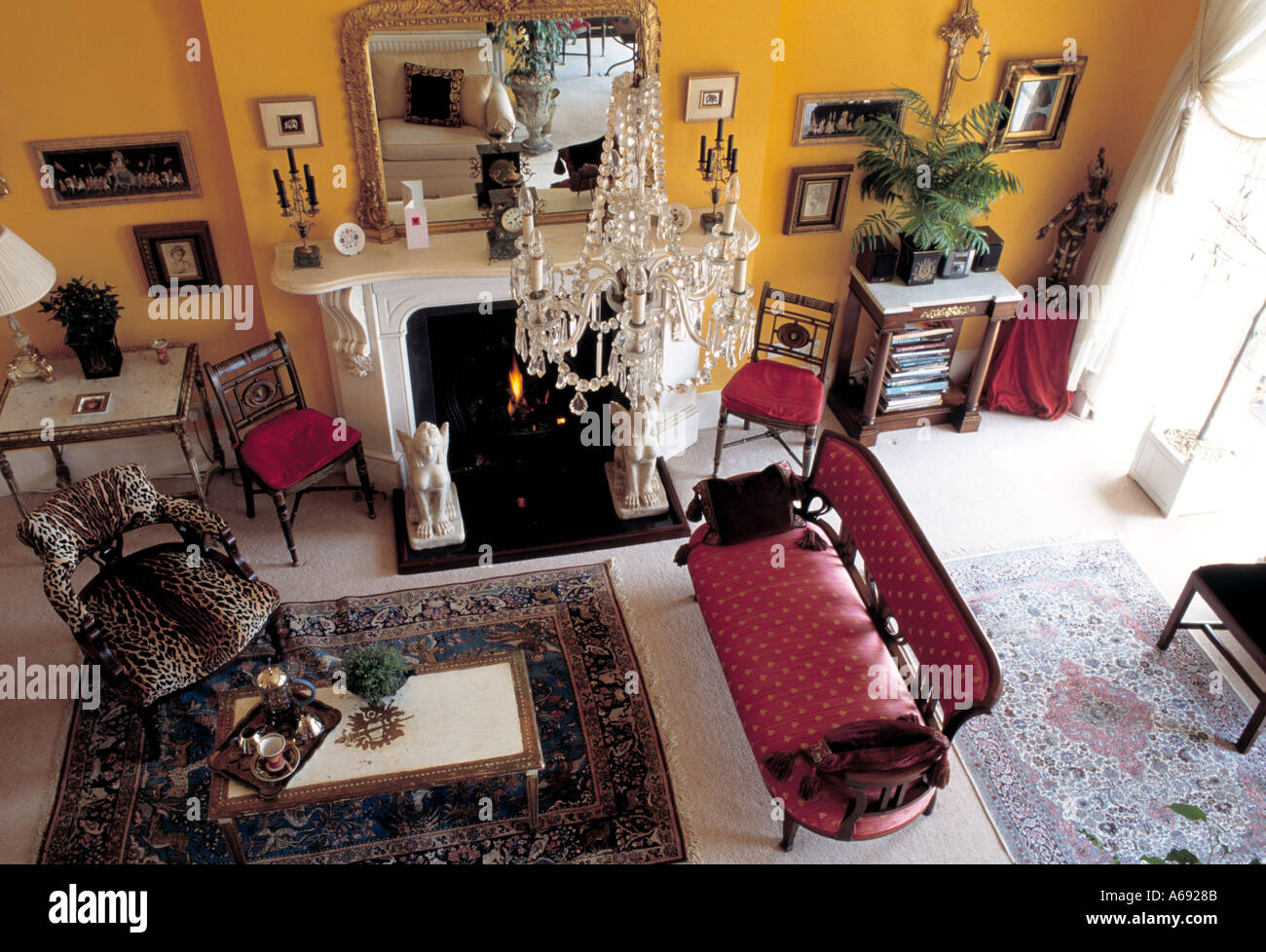 Birds-eye view of glass chandelier and animal-print chair ...