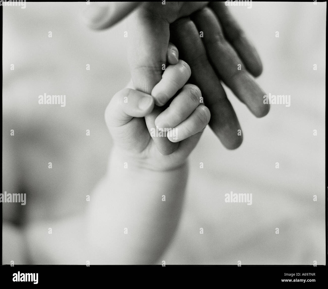 Baby's hand holding parent's finger. - Stock Image