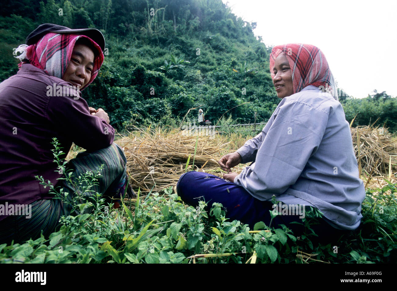 Two female farmers taking a rest after labour on the field. Laos. - Stock Image