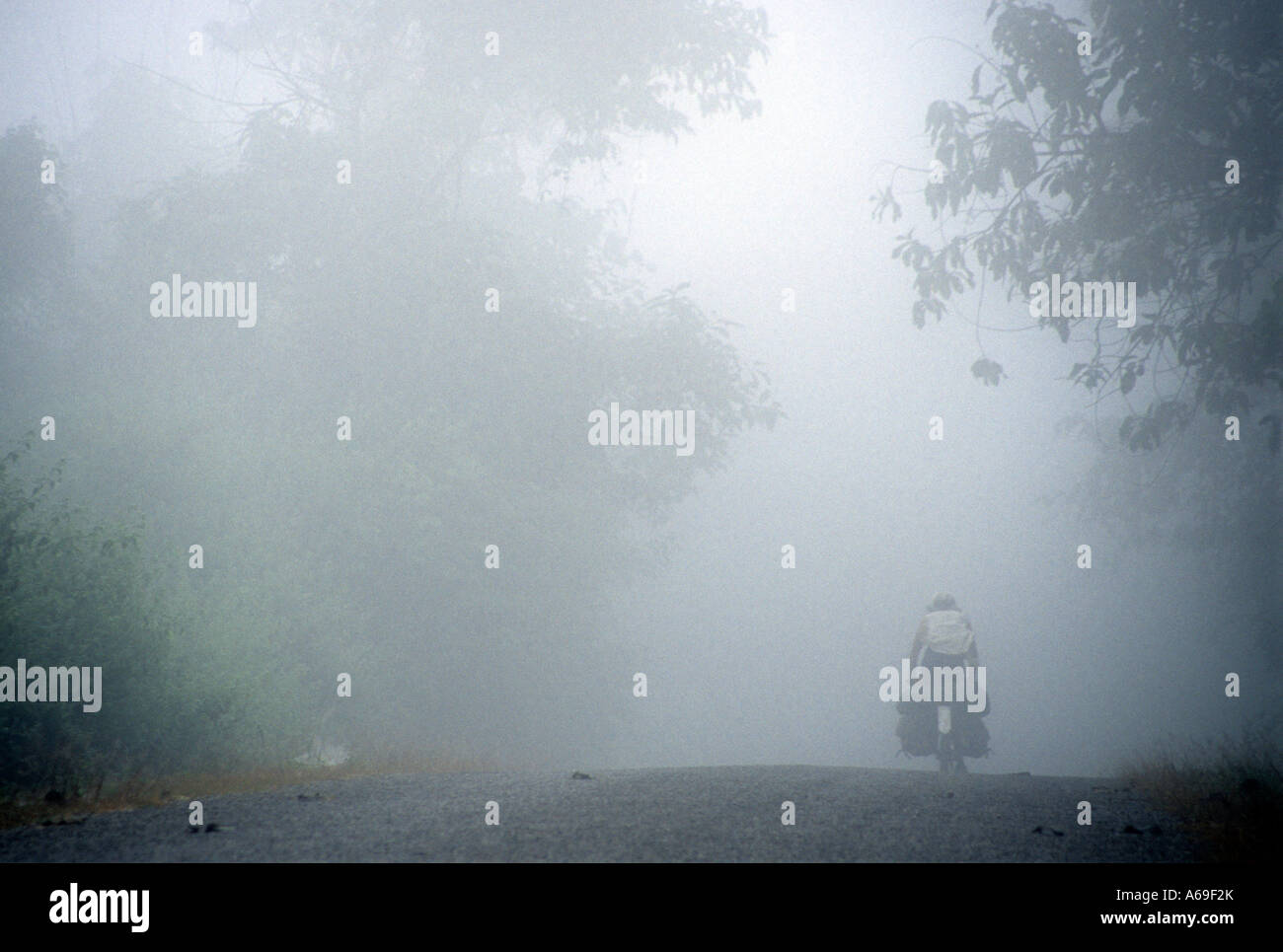 Western cyclist, traveller, cycling in the early morning mist in  hills of  Houa Phan province, Laos - Stock Image