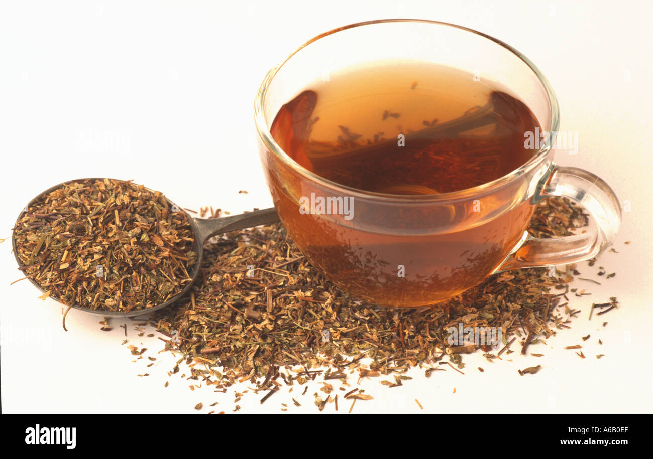 augentrost tee tea eyebright euphraisa officinalis - Stock Image