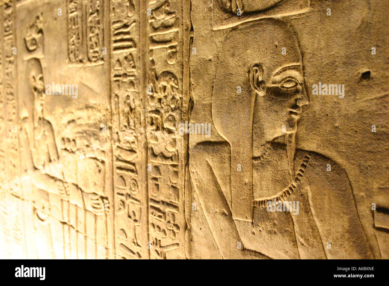 Detail of Hieroglyphs - Stock Image