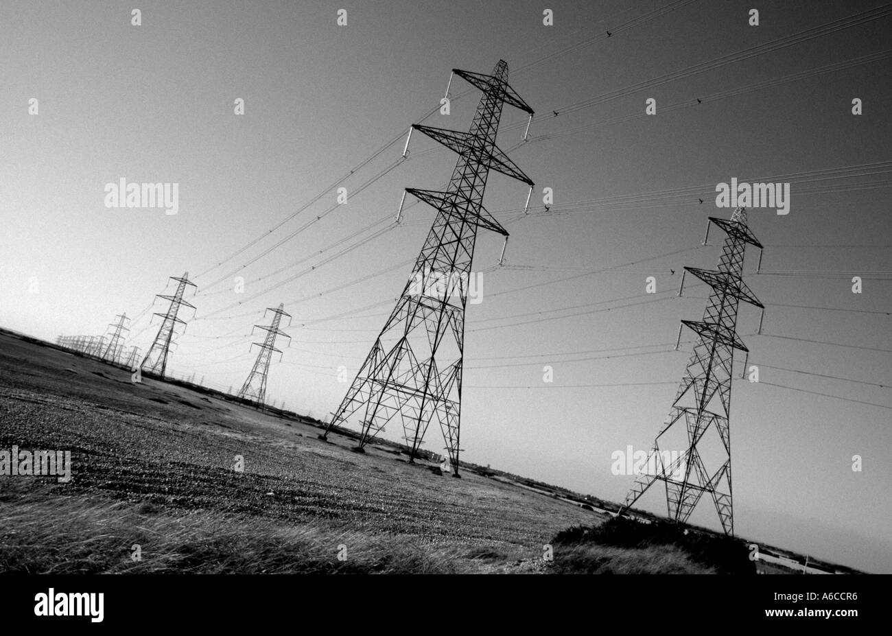 Power lines leading away from Dungeness Nuclear Power Station - Stock Image