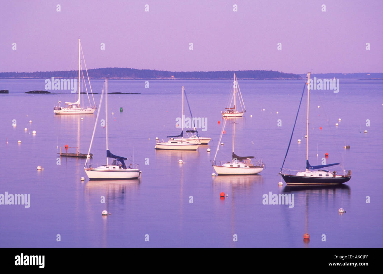 USA Maine Camden Camden Harbour Penobscot Bay sailboats moored in the bay at twilight - Stock Image