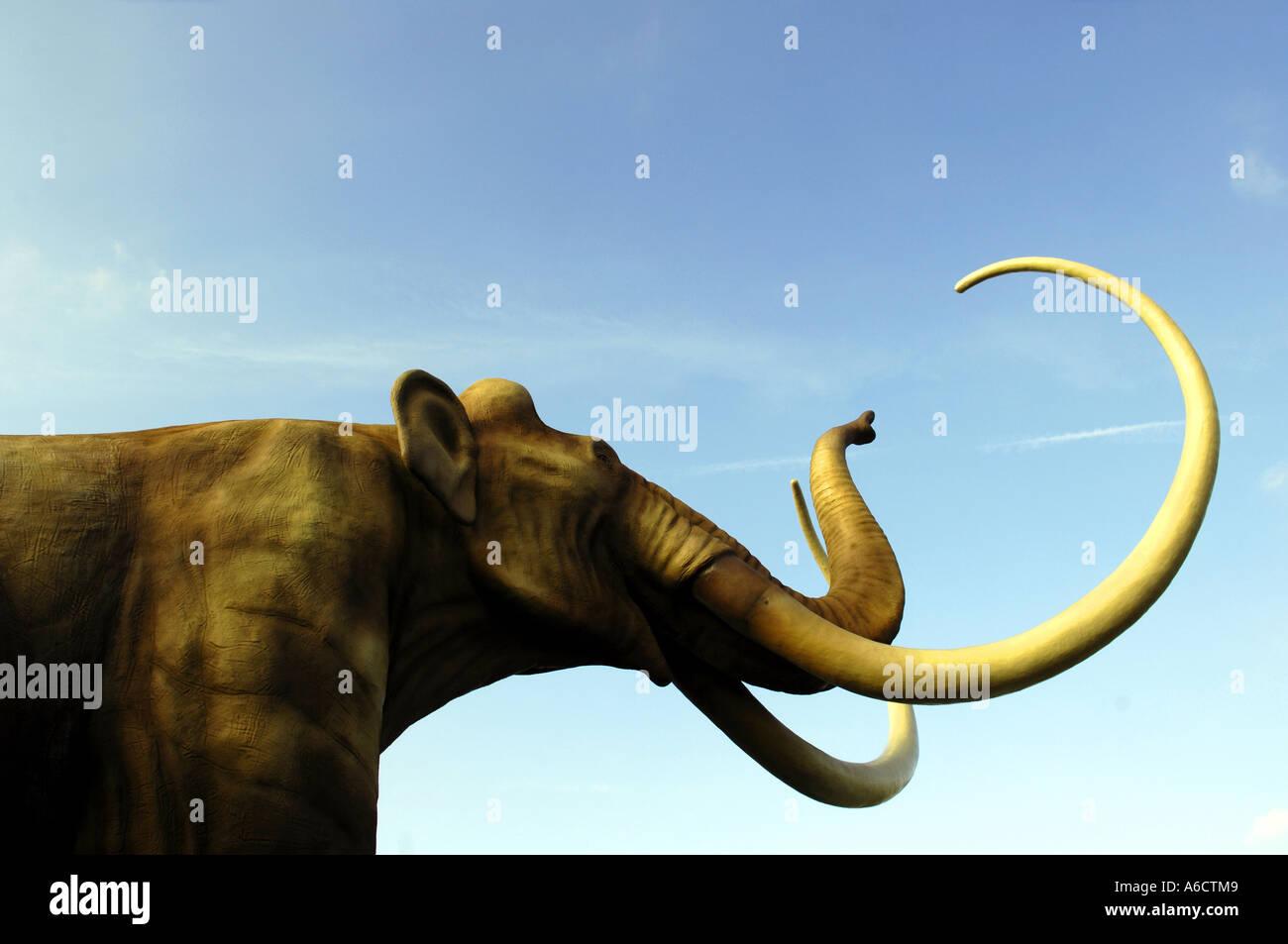prehistoric mammoth blue sky tusks head face portrait Stock