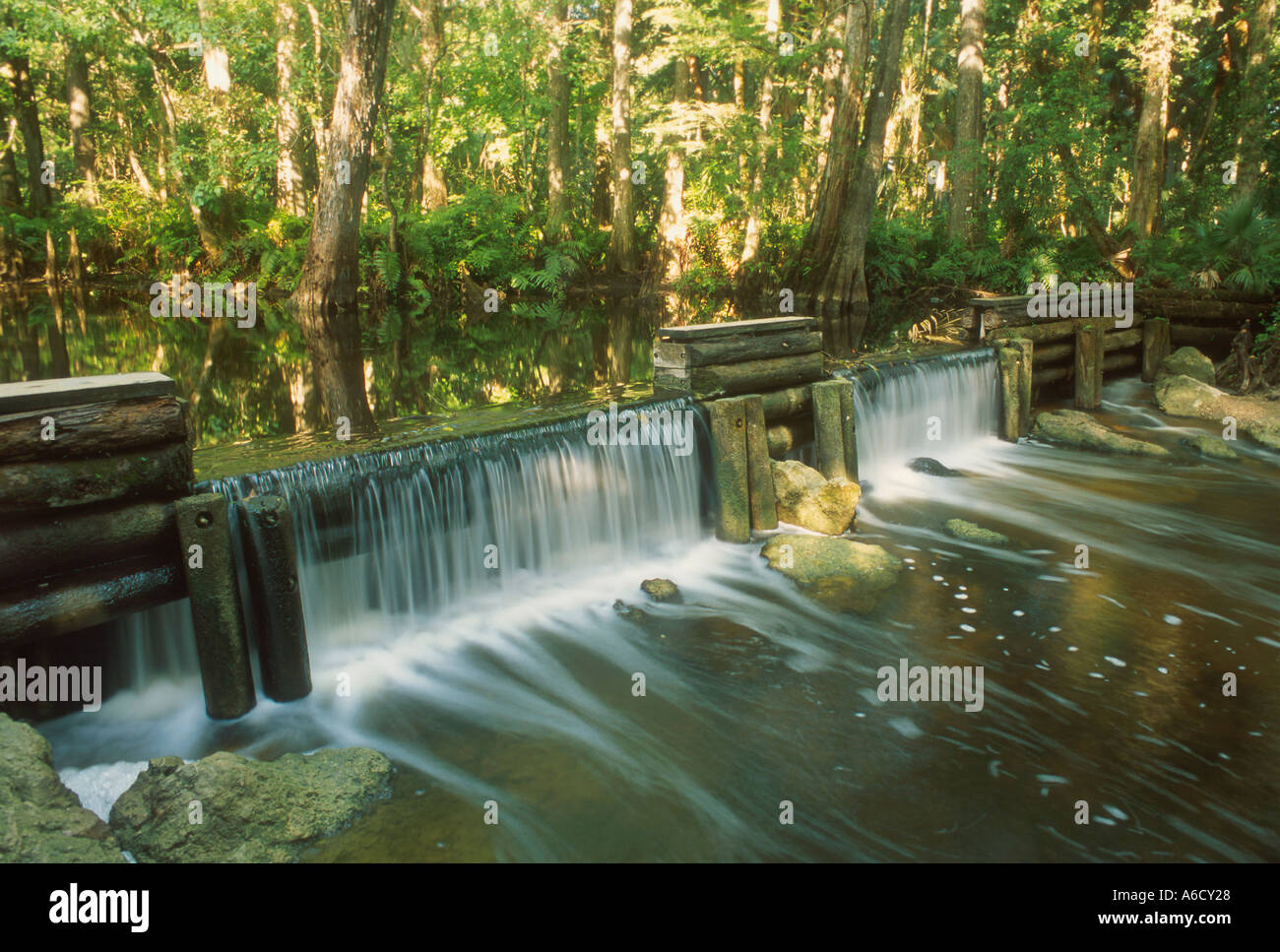 Martin County Loxahatchee River waterfall at damn in tropical forest wild and scenic river Florida - Stock Image