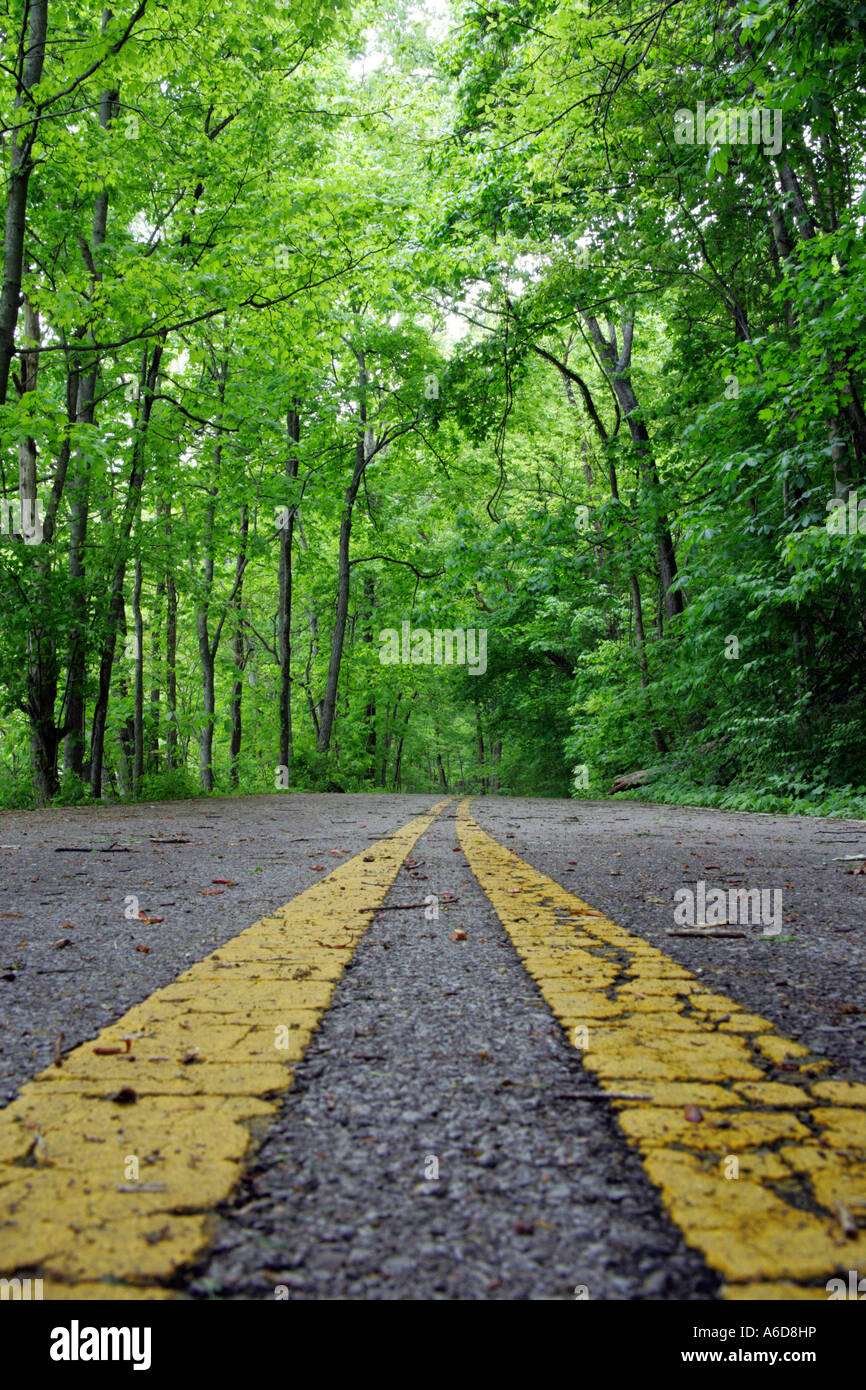 Close-up of a road marking, Otter Creek Road, Radnor Lake State Park, Tennessee, USA - Stock Image