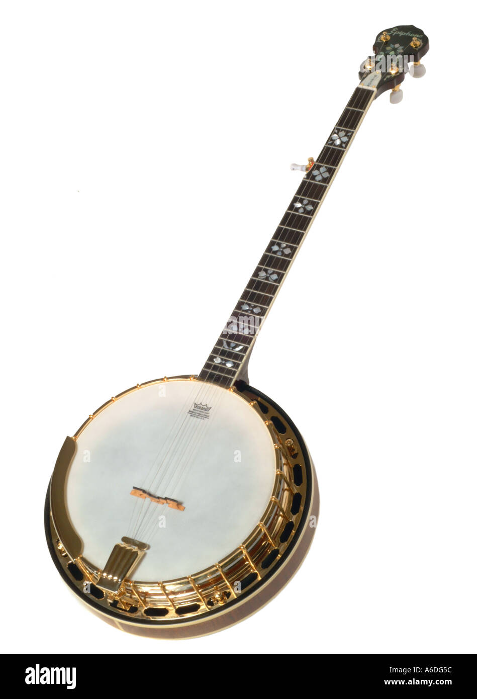 epiphone gibson banjo 5 string  studio cutout cut out white background knockout dropout - Stock Image