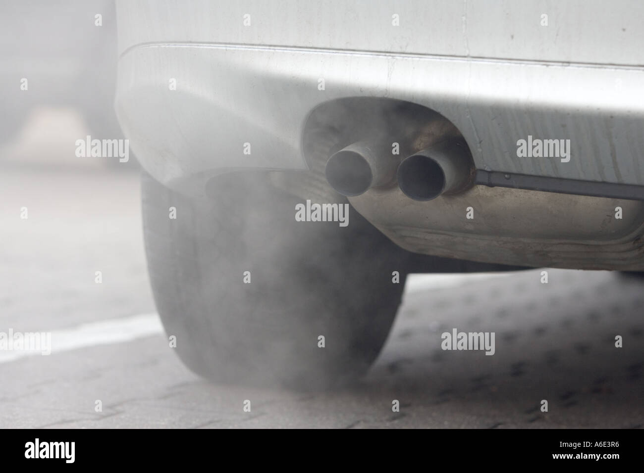 DEU, 09.02.2005, exhause emissions particular filter, Diesel filter, particular filter for diesel engined vehicles - Stock Image