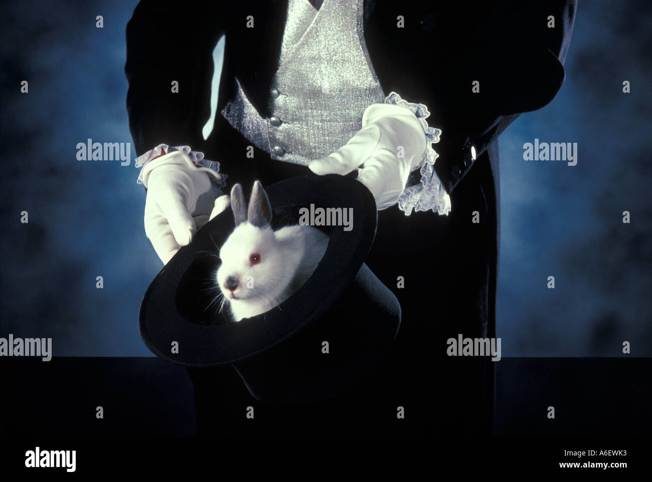 Magician pulls rabbit from top hat - Stock Image