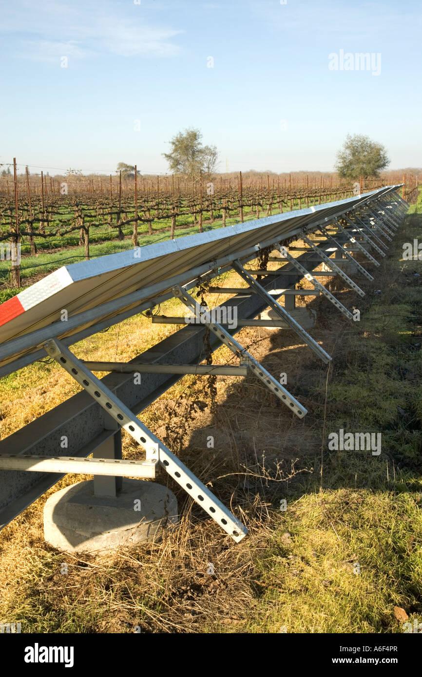 Solar panels installed in dormant vineyard, California - Stock Image