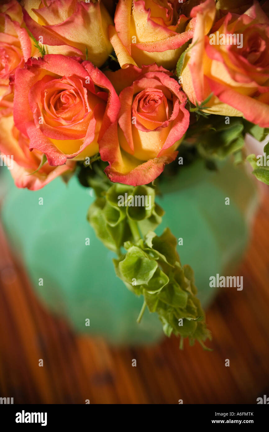 Roses in vase - Stock Image