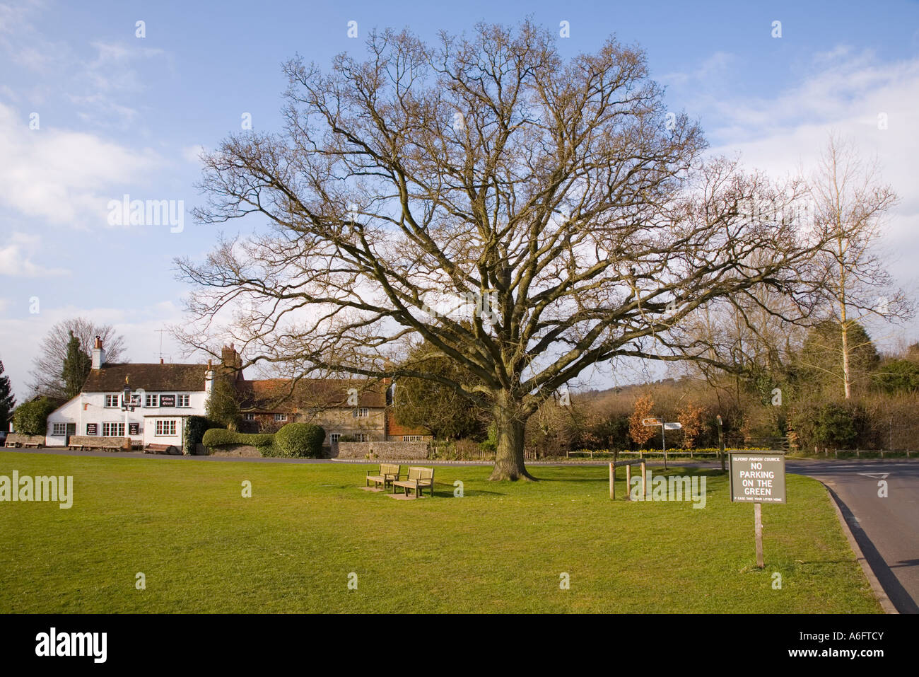 Picturesque village green with pub and oak tree Tilford Surrey England UK - Stock Image