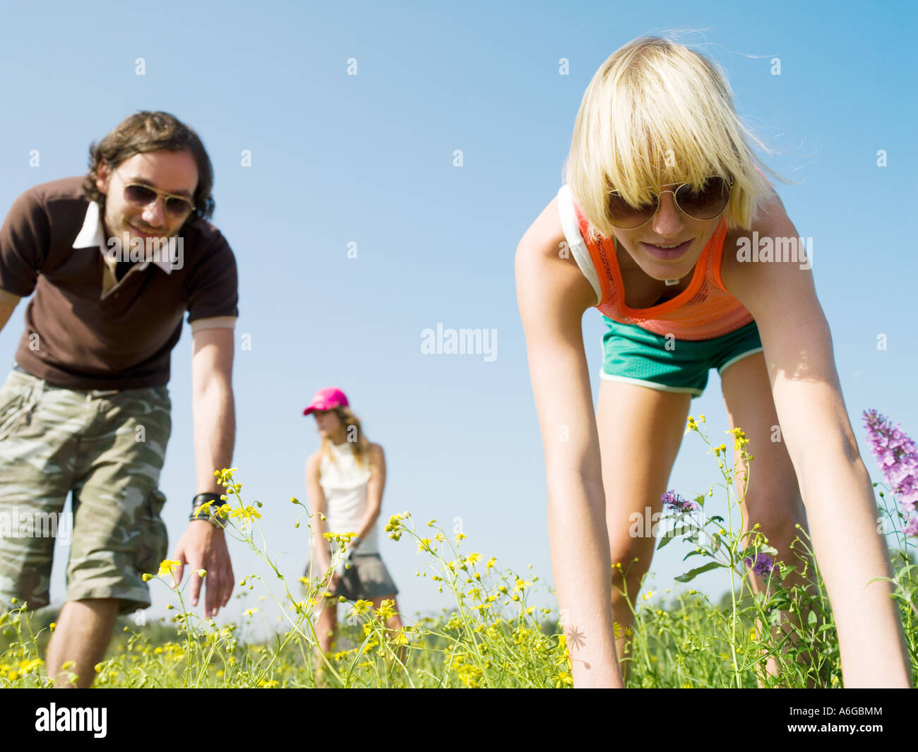 Lost Golf Ball Stock Photos & Lost Golf Ball Stock Images