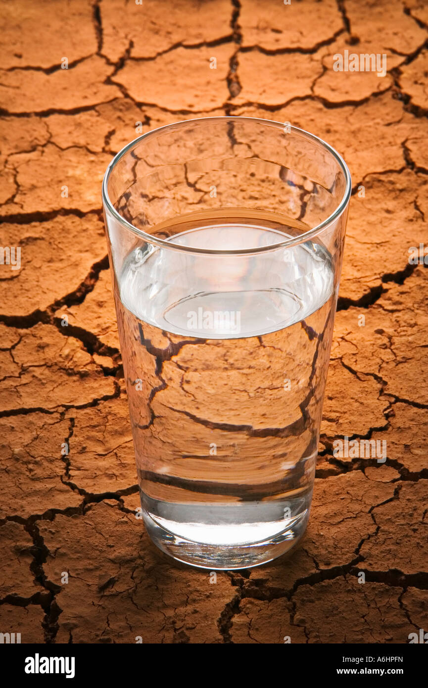 Water glass on cracked earth - Stock Image