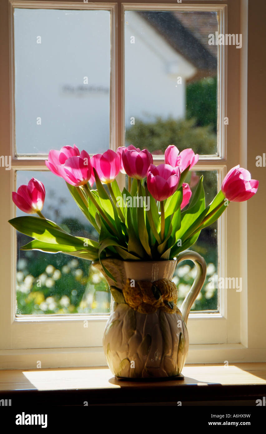Tulips In A Vase On Windowsill Or Window Ledge Spring Flowers Stock