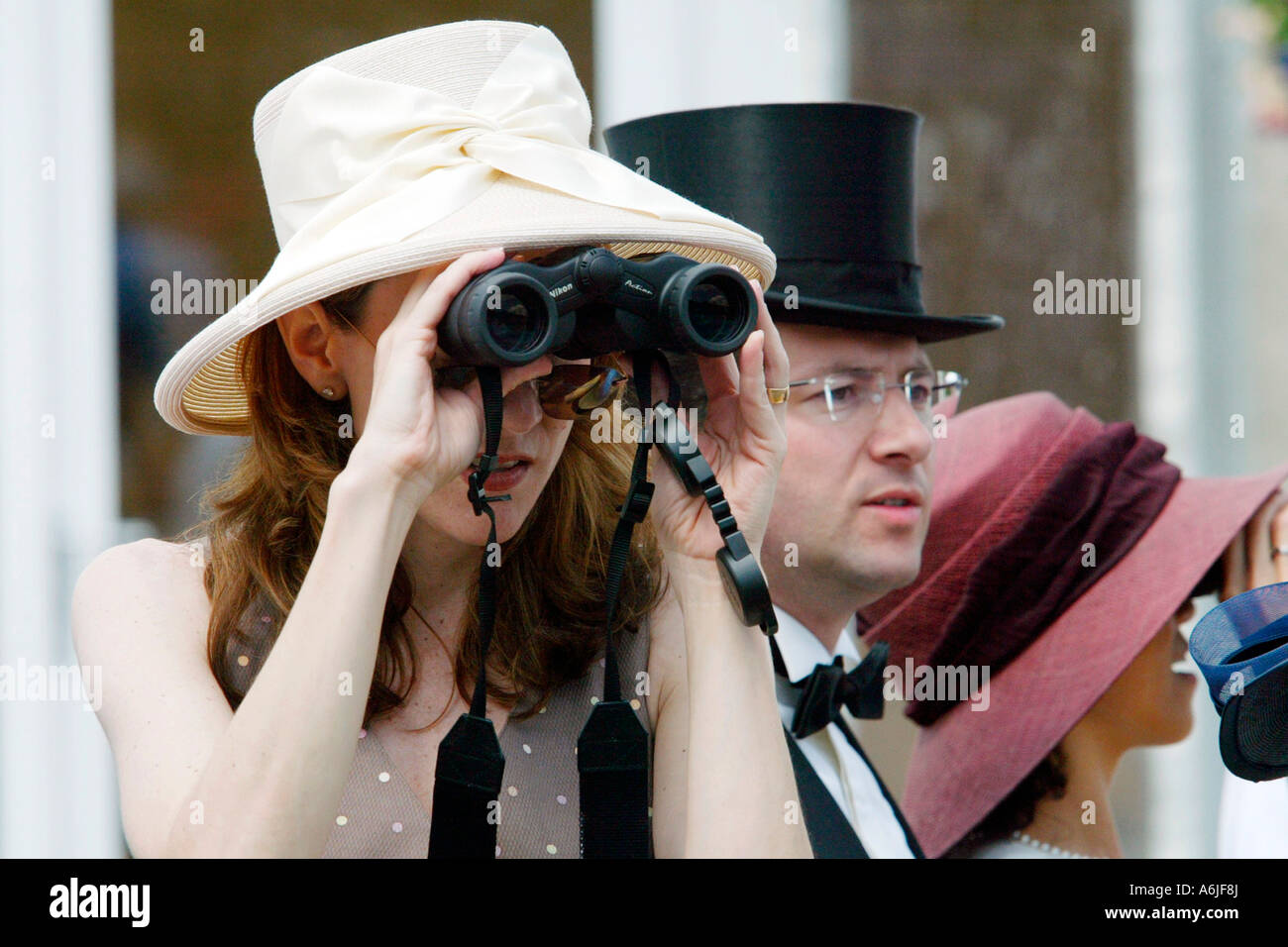 People at horse races, Royal Ascot, Great Britain - Stock Image