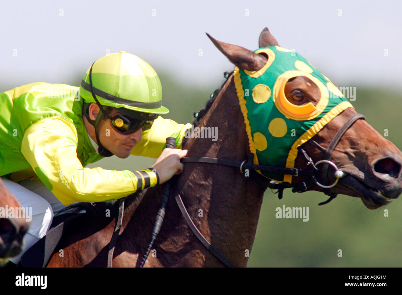 A race horse and his jockey - Stock Image