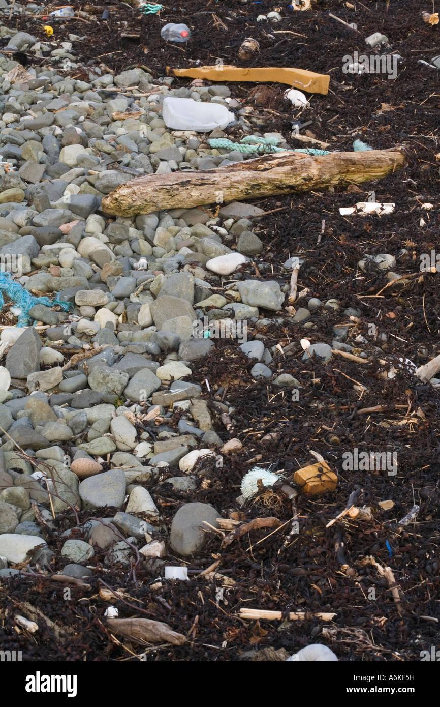 Beach tideline pollution - Stock Image