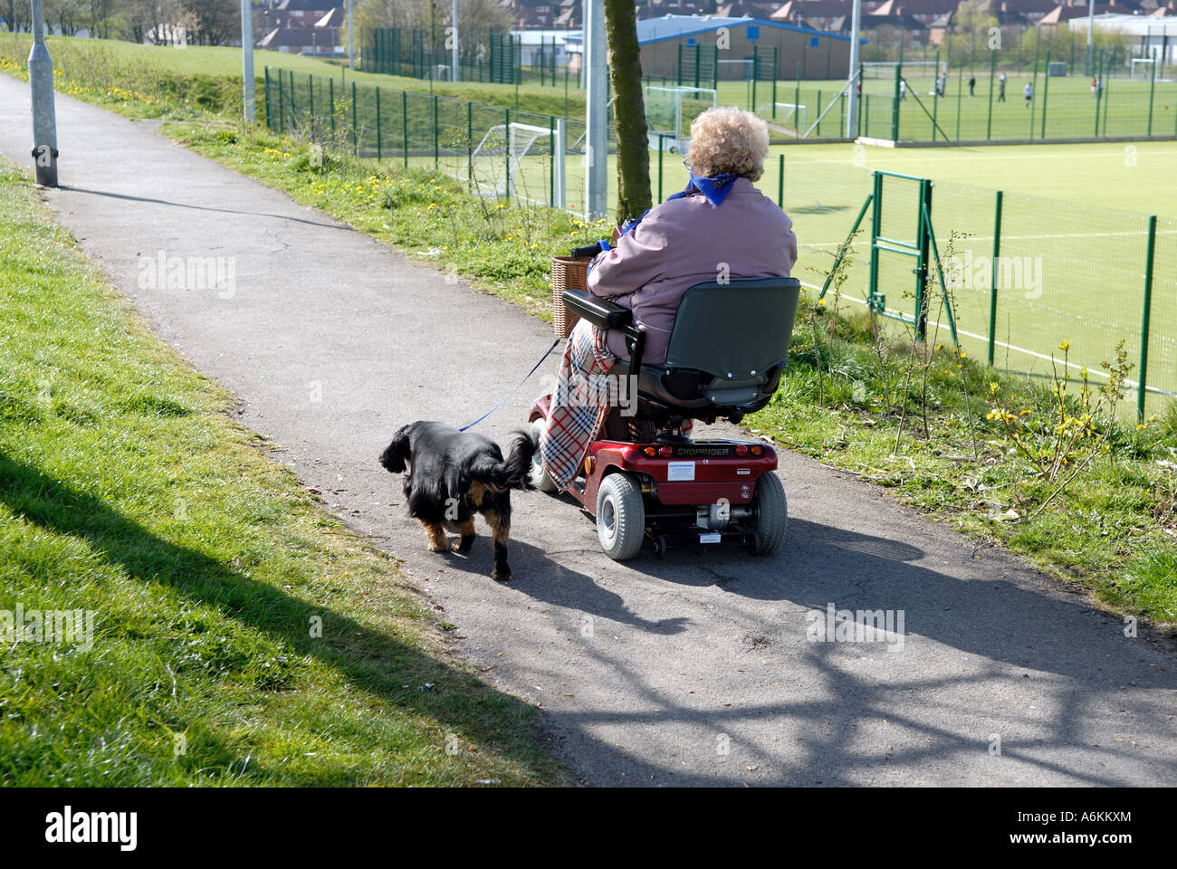 Electric wheelchair oap and dog Stock Photo: 11600491 - Alamy