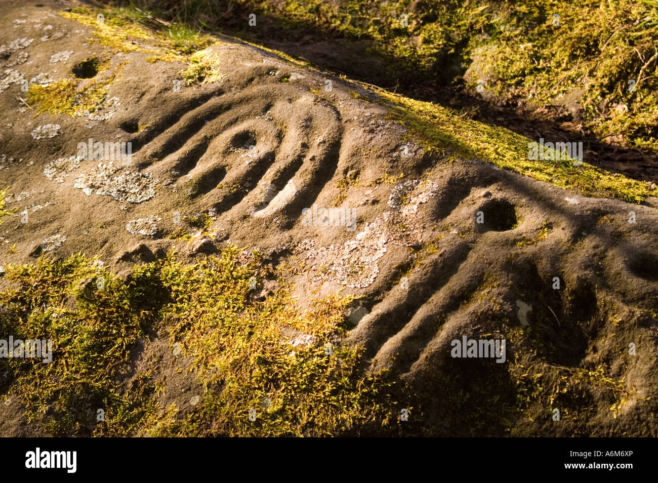 Detail of carved rock at Roughting Linn, Northumberland - Stock Image