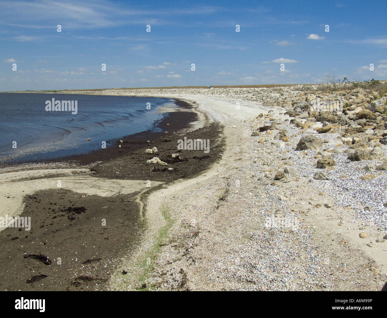 Lake Okeechobee low water levels drought exposed bank Port Mayaca 03 07 - Stock Image