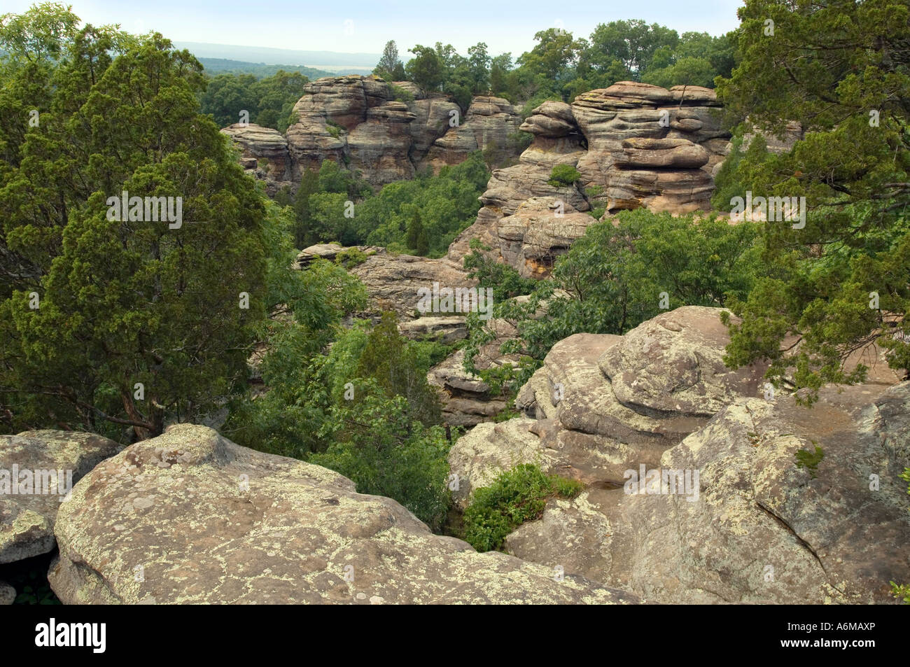 Rock formations at the Garden of the Gods Wilderness Area in the Shawnee National Forest in southern Illinois - Stock Image
