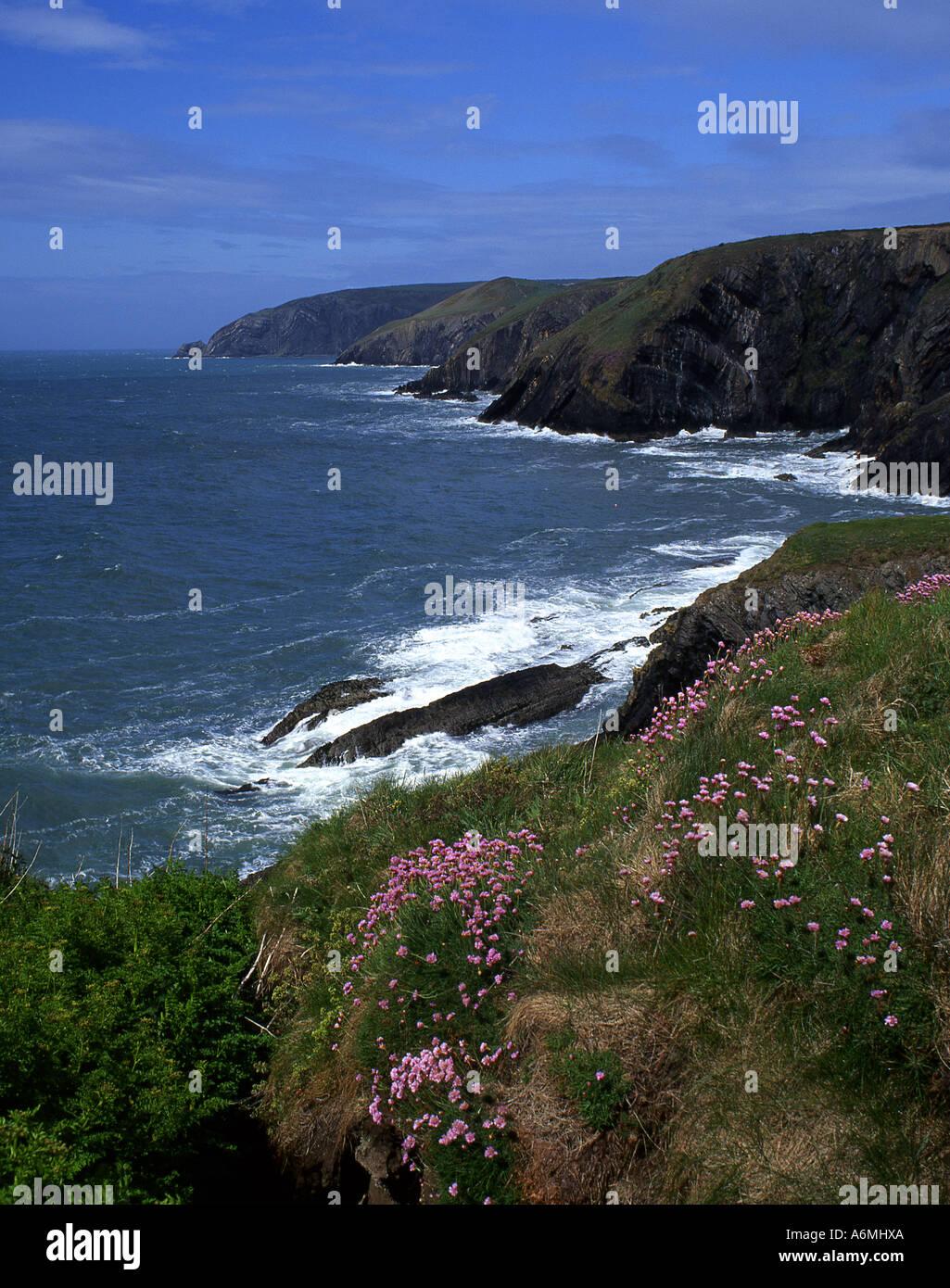 Ceibwr Bay Near Moylegrove Rocky wild coastal scenery with stormy sea Pembrokeshire West Wales UK - Stock Image