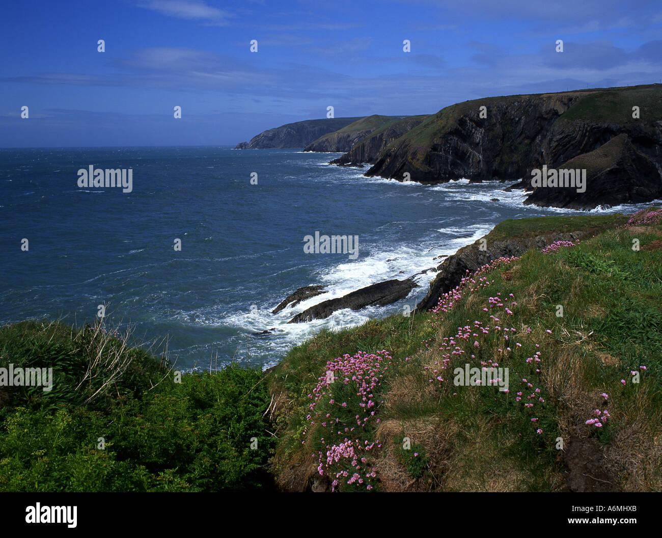 Ceibwr Bay Near Moylegrove Rocky wild coastal scenery with stormy sea West Wales UK - Stock Image