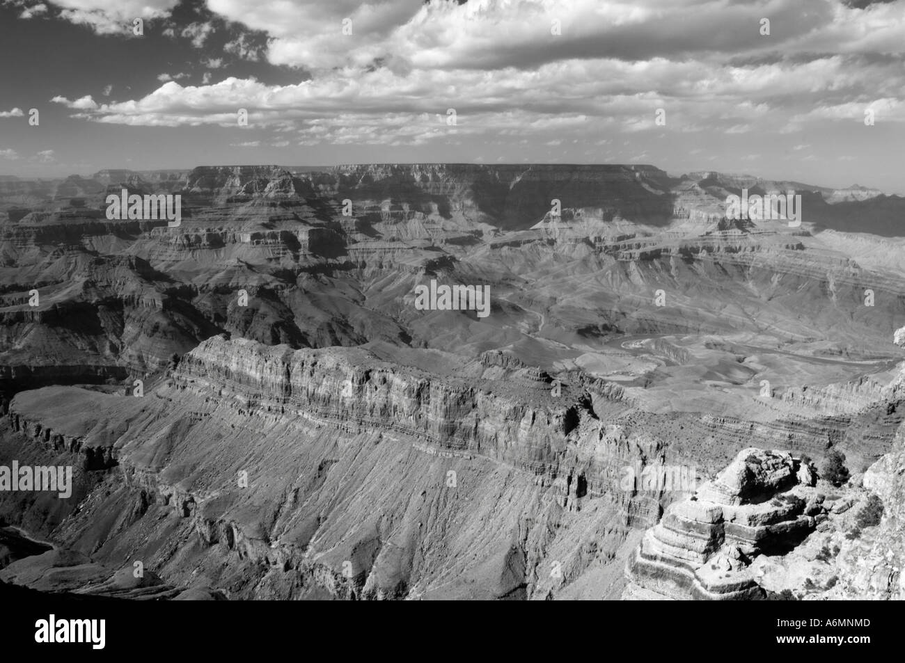 black and white of grand canyon - Stock Image