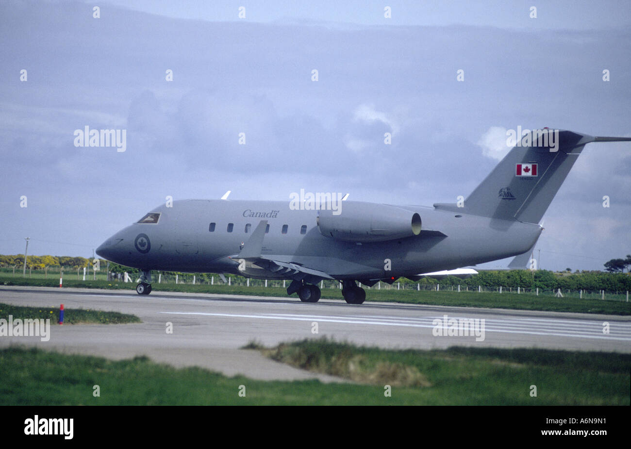 Canadair CC-144 Challenger    GAV 2298-239 - Stock Image